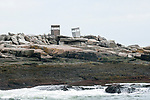 Eastern Egg Rock, Muscongus Bay, Maine home of 150 nesting pairs of Atlantic Puffin.