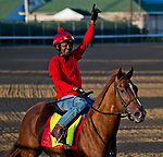LOUISVILLE, KY - APRIL 28: Flameaway, trained by Mark Casse, exercises in preparation for the Kentucky Derby at Churchill Downs on April 28, 2018 in Louisville, Kentucky. (Photo by Scott Serio/Eclipse Sportswire/Getty Images)