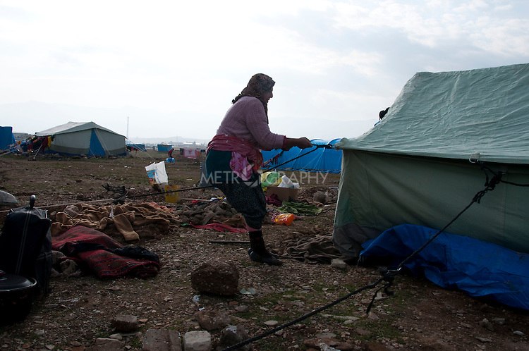 ARBAT, IRAQ: A Syrian women erects a tent in the Arbat refugee camp...45 families who have fled the violence in Syria are currently living in the Arbat refugee camp 19km outside the Iraqi city of Sulaimaniyah...Photo by Zmnako Ismael/Metrography
