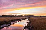 The Newbury Saltmarsh in Newbury, Massachusetts, USA