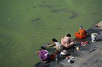 Asie/Inde/Rajasthan/Udaipur: Les femmes lavent le linge dans le lac Pichola