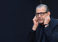 Jeff Goldblum @ Emmerich Hand and Footprint Ceremony held @ the Chinese theatre.<br /> June 20, 2016.
