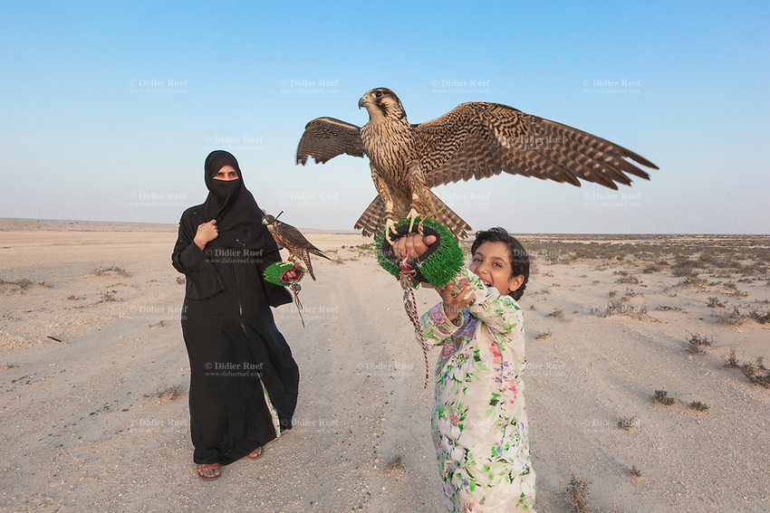 """United Arab Emirates (UAE). Abu Dhabi. Ayesha Matar Al Mansoori and her daughter Osha hold both a falcon on their arms at the training place of Abu Dhabi Falconers Club. Ayesha Al Mansoori is the first woman falconer in the UAE and the only member of the Ladies Falconer Club. She wears a black abaya and a niqab. The abaya, sometimes also called an aba, is a simple, loose over-garment, essentially a robe-like dress, worn by some women in parts of the Muslim world and the Arabian Peninsula. The abaya covers the whole body except the head, feet, and hands. It can be worn with the niqāb, a face veil covering all but the eyes.The muslim women who wear the niqab do so in places where they may encounter non-mahram (non-related) men. Falcons are birds of prey in the genus Falco, which includes about 40 species. Adult falcons have thin, tapered wings, which enable them to fly at high speed and change direction rapidly. Additionally, they have keen eyesight for detecting food at a distance or during flight, strong feet equipped with talons for grasping or killing prey, and powerful, curved beaks for tearing flesh. Falcons kill with their beaks, using a """"tooth"""" on the side of their beaks. The United Arab Emirates (UAE) is a country in Western Asia at the northeast end of the Arabian Peninsula. 20.02.2020  © 2020 Didier Ruef"""