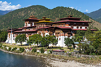 Punakha, Bhutan.  Punakha Dzong (Fortress/Monastery).  Mo River in Foreground.