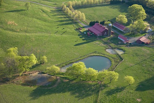 Farm pasture and pond
