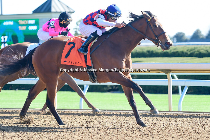 April 02, 2021: Twenty Carat #7 ridden by Luis Saez wins the Beaumont Stakes (Grade 3) on Keeneland Opening Day at Keeneland Race Course in Lexington, Kentucky on April 02, 2021. Jessica Morgan/Eclipse Sportswire/CSM