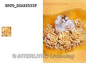 Alfredo, WEDDING, HOCHZEIT, BODA, photos+++++,BRTODIA22533F,#W#