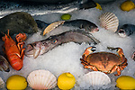 Frankreich, Provence-Alpes-Côte d'Azur, Nizza: reiches Fisch- und Seafood-Angebot der Restaurants auf dem Cours Saleya   France, Provence-Alpes-Côte d'Azur, Nice: restaurants at Cours Saleya offering fish and seafood