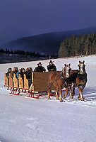 Scenic, Winter, Holiday Vacation, Horses, Snow, Group of People, Sightseeing, Sleigh, Sleighride. Dinner Sleighride At Keystone Resort. Backcountry Colorado United States Rocky Mountains, Summit County.