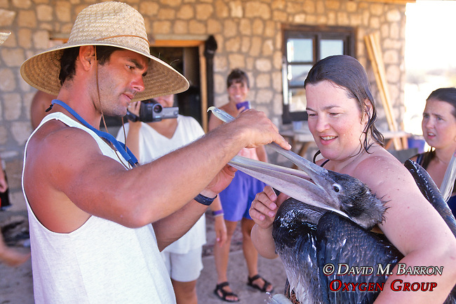 Sharona Rowe & Jeff Seminoff Checking On Health Of Pelican