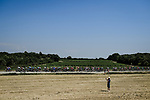 The peloton during Stage 16 of the 2019 Tour de France running 177km from Nimes to Nimes, France. 23rd July 2019.<br /> Picture: ASO/Pauline Ballet   Cyclefile<br /> All photos usage must carry mandatory copyright credit (© Cyclefile   ASO/Pauline Ballet)