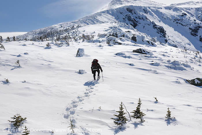 A winter hiker breaking trail in the alpine zone while ascending the Air Line Trail in the White Mountains, New Hampshire during the winter months.
