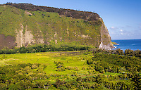 View from the lookout at Waipi'o Valley, Big Island.