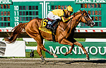 OCEANPORT, NJ - JULY 29: Good Magic, #6, ridden by Jose Ortiz, wins the Haskell Invitational Stakes on Haskell Invitational Day at Monmouth Park Race Course on July 29, 2018 in Oceanport, New Jersey. (Photo by Sue Kawczynski/Eclipse Sportswire/Getty Images)