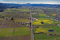 aerial photograph of Napa valley California in Spring, Highway 29 toward Mount St. Helena. Mustard is blooming in many vineyards. In the foreground, the Oakville, AVA.  In the middle area of the photograph, Opus and Mondavi wineries.