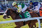 February 29, 2020: #5 Cheermeister with jockey Emisael Jaramillo  on board, wins the Herecomesthebride Stakes G3 on February 29th, 2020 at Gulfstream Park in Hallandale Beach, Florida. LizLamont/Eclipse Sportswire/CSM