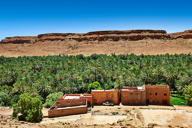 The fertile oasis of Ouled Chaker, ziz Gorge, Morocco