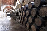 Oak barrel aging and fermentation cellar. Codorniu, Sant Sadurni d'Anoia, Penedes, Catalonia, Spain