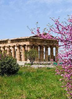 ITA, Italien, Kampanien, Paestum: von griechischen Kolonisten im 7. Jh. v. Chr. erbaute Tempelstadt Poseidonia - hier der Poseidontempel (Tempio di Nettuno) wird heute der Goettin Hera (Gattin des Zeus) zugeordnet | ITA, Italy, Campania, Paestum: temple of Neptune - today HeraTemple