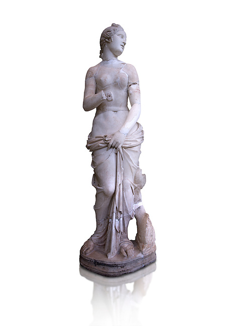 The Roman Venus Statue, the Goddess of Love, follows the style of a modest Aphrodite, known by other Roman replicas are copies of the third century BC Hellenistic Greek statues now lost. Dated circa 1st quarter of second century AD, the Venus statue was excavated from the Odeon of Carthage. The National Bardo Museum, Tunis.  Against a white background.