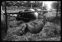 Parc des Expositions (île du Ramier). 4 avril 1978. Vue d'ensemble des stands de bovins et ovins (vue en plongée). Cliché pris lors du 44ème Concours régional agricole.