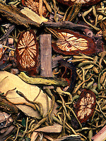 Various roots and herbs used in making medicinal Chinese herbal tea.