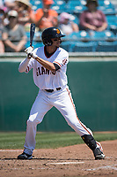 San Jose Giants shortstop Brandon Van Horn (9) at bat during a California League game against the Lancaster JetHawks at San Jose Municipal Stadium on May 13, 2018 in San Jose, California. San Jose defeated Lancaster 3-0. (Zachary Lucy/Four Seam Images)