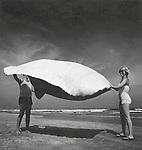 Couple on beach shaking blanket. 1979