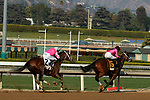 """ARCADIA, CA  SEP 26: #2 Rombauer, ridden by Mike Smith, gives chase to #6 Get Her Number, ridden by Flavien Prat, in the stretch of the American Pharoah Stakes (Grade l) """"Win and You're In Breeders' Cup Juvenile Division"""" on September 26, 2020 at Santa Anita Park in Arcadia, CA. (Photo by Casey Phillips/Eclipse Sportswire/CSM."""