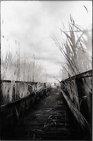 Walkway to the beach<br />