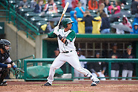Fort Wayne TinCaps Luis Almanzar (3) at bat during a Midwest League game against the Kane County Cougars at Parkview Field on May 1, 2019 in Fort Wayne, Indiana. Fort Wayne defeated Kane County 10-4. (Zachary Lucy/Four Seam Images)
