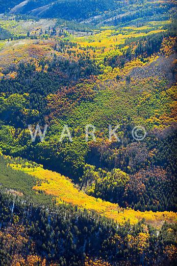 Fall colors northeast of Gunnison, Colorado. Oct 5, 2013