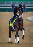 LOUISVILLE, KY - MAY 04: Outwork gallops in preparation for the Kentucky Derby at Churchill Downs on May 04, 2016 in Louisville, Kentucky. (Photo by Zoe Metz/Eclipse Sportswire/Getty Images)