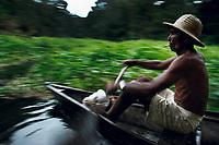Pescador rema pela trilha aberta na canarana (planta aquática) que fechava a entrada do lago Preto em busca do Pirarucú. <br /> Somentre este ano o Ibama liberou a pesca de 800T  do maior peixe de água doce do país beneficiando milhares de pescadores na área de influência da RDS - Reserva de Desenvolvimento Sustentável Mamirauá, exportando sua produção legalmente para o sul do país.<br /> Maraã, Amazonas,  Brasil.<br /> Foto:  ©Paulo Santos<br /> 27/11/2004