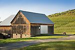 Marchalek's Fruit Farm, Montoursville, PA. Barn in Spring.