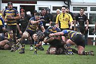 Taunton RFC v Old Elthamians - Jan 2015
