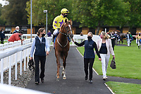 Winner of The Radcliffe & Co Novice Median Auction Stakes (Div 2) Percys Lad ridden by Charles Bishop and trained by Eve Johnson Houghton is led into the Winners enclosure during Horse Racing at Salisbury Racecourse on 11th September 2020