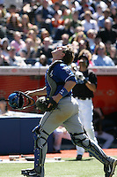 May 24th 2009:  Catcher John Buck (14) of the Kansas City Royals during a game at the Rogers Centre in Toronto, Ontario, Canada .  Photo by:  Mike Janes/Four Seam Images