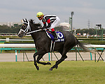 Curren Chan wins the 45th Sprinters Stakes on Oct. 2nd, 2011 at Nakayama Racecourse.