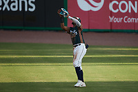 Charleston Boiled Peanuts right fielder Diego Infante (13) catches a fly ball during the game against the Augusta GreenJackets at Joseph P. Riley, Jr. Park on June 26, 2021 in Charleston, South Carolina. (Brian Westerholt/Four Seam Images)