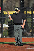 The home plate umpire makes a strike call during the NCAA baseball game between the Rutgers Scarlet Knights and the Iona Gaels at City Park on March 8, 2017 in New Rochelle, New York.  The Scarlet Knights defeated the Gaels 12-3.  (Brian Westerholt/Four Seam Images)