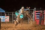 SEBRA - Delta, PA - 10.3.2014 - Bulls & Action