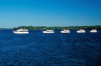 Cruise boats in a row.