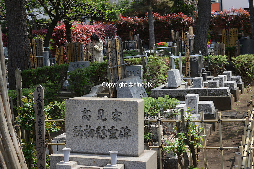 Family visits their pet grave.Individual graves for lost loved pets. Gravestones are designed with thoughts.<br /> <br /> Jikeiin is the biggest pet graveyard in western suburb of Tokyo.  This has founded in 1921 and 13000m2 land space.  They have 16 cremation machine which can cremate from small animal like turtle or birds to big animals like tigers and bears.  They provide buddism style funeral ceremony and graves to pet owners who have lost their loved pets.  Jikeiin is the non-sectarian temple.