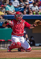 11 March 2014: Washington Nationals catcher Wilson Ramos in action during a Spring Training game against the New York Yankees at Space Coast Stadium in Viera, Florida. The Nationals defeated the Yankees 3-2 in Grapefruit League play. Mandatory Credit: Ed Wolfstein Photo *** RAW (NEF) Image File Available ***