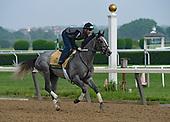 06/02/2019 - Belmont Stakes week