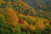 Oconaluftee River Valley<br />    from Newfound Gap Road<br /> Great Smoky Mountains National Park<br /> North Carolina