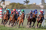 HALLANDALE BEACH, FL - FEB 10:Elysea's World #8 (left) trained by Chad C. Brown with Javier Castellano in the irons swings wide at the turn on the way to winning the $150,000 Suwannee River Stakes (G3) at Gulfstream Park on February 10, 2018 in Hallandale Beach, Florida. (Photo by Bob Aaron/Eclipse Sportswire/Getty Images)