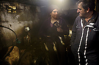 'Lulu', Lucian Blanc with his daughter Angeline in his goat shed, Bonneval sur Arc, Savoie, France, 16 February 2012