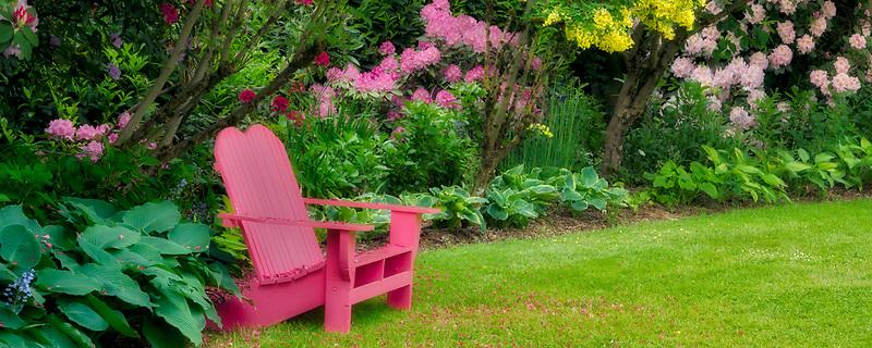 Chair in GardenSchreiner's Iris Gardens, Oregon